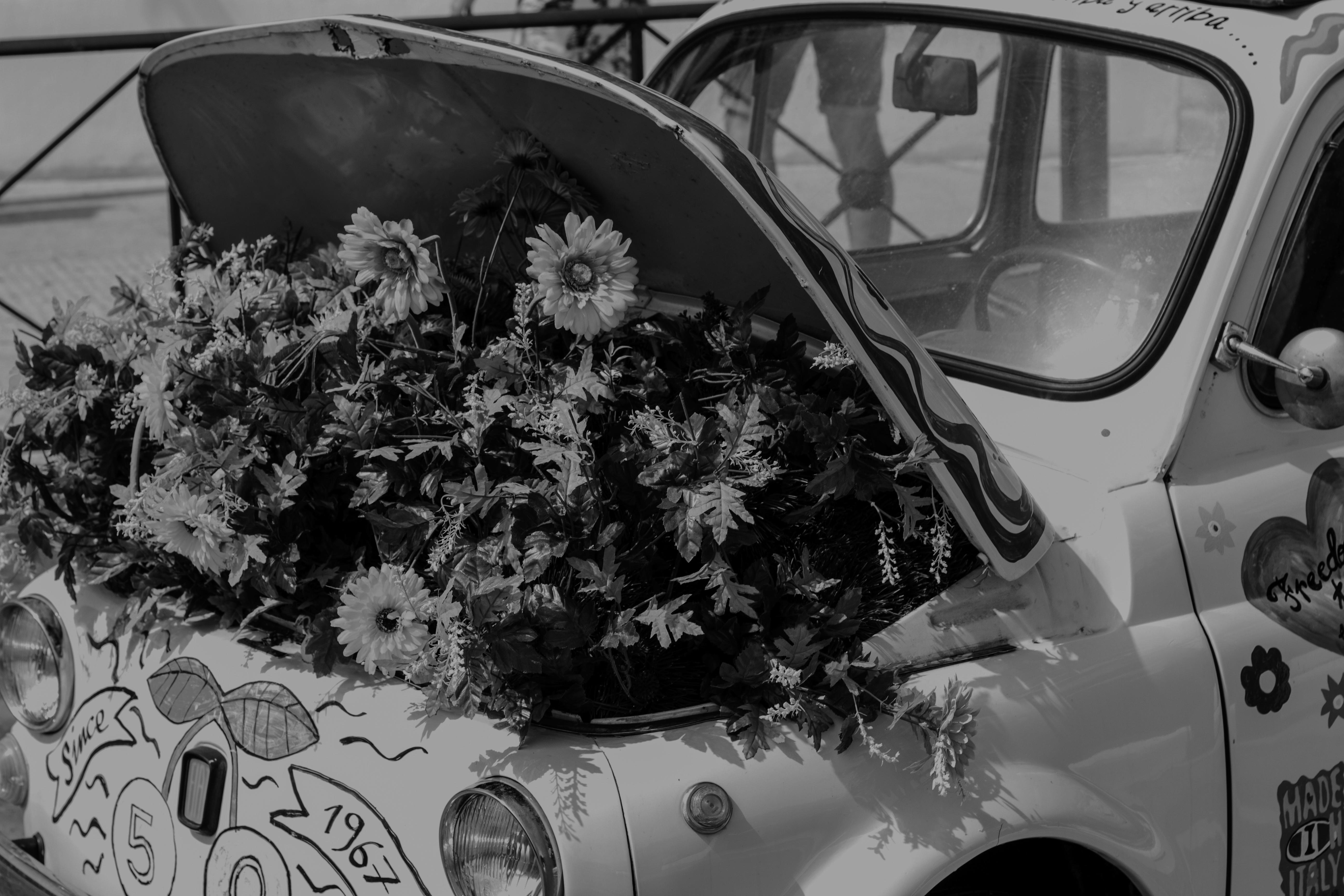 ARMANI X FIAT 500: Sustainable design