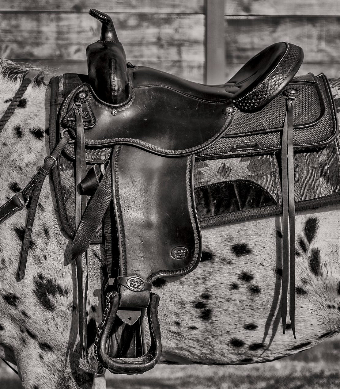 Saddle up! A look at the history and craftmanship of saddlery
